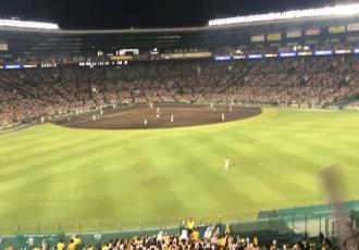 そろそろ阪神タイガース観戦に行きたいです