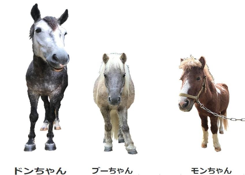 乗馬体験その2
